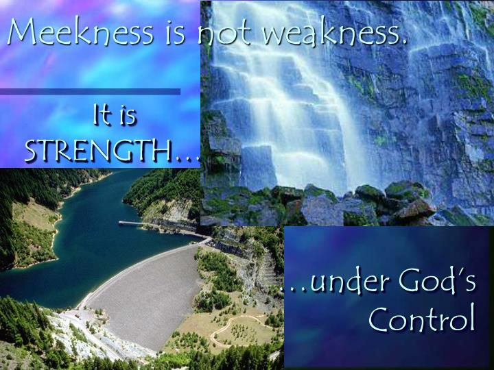 Meekness is not weakness.