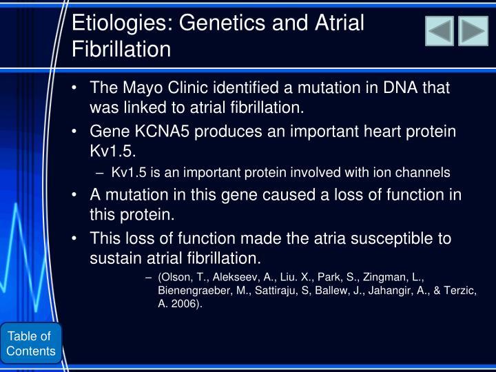 Etiologies: Genetics and Atrial Fibrillation