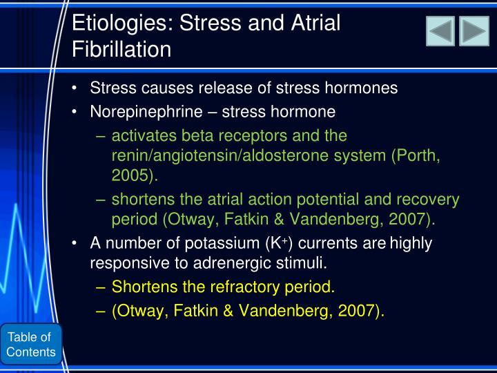 Etiologies: Stress and Atrial Fibrillation