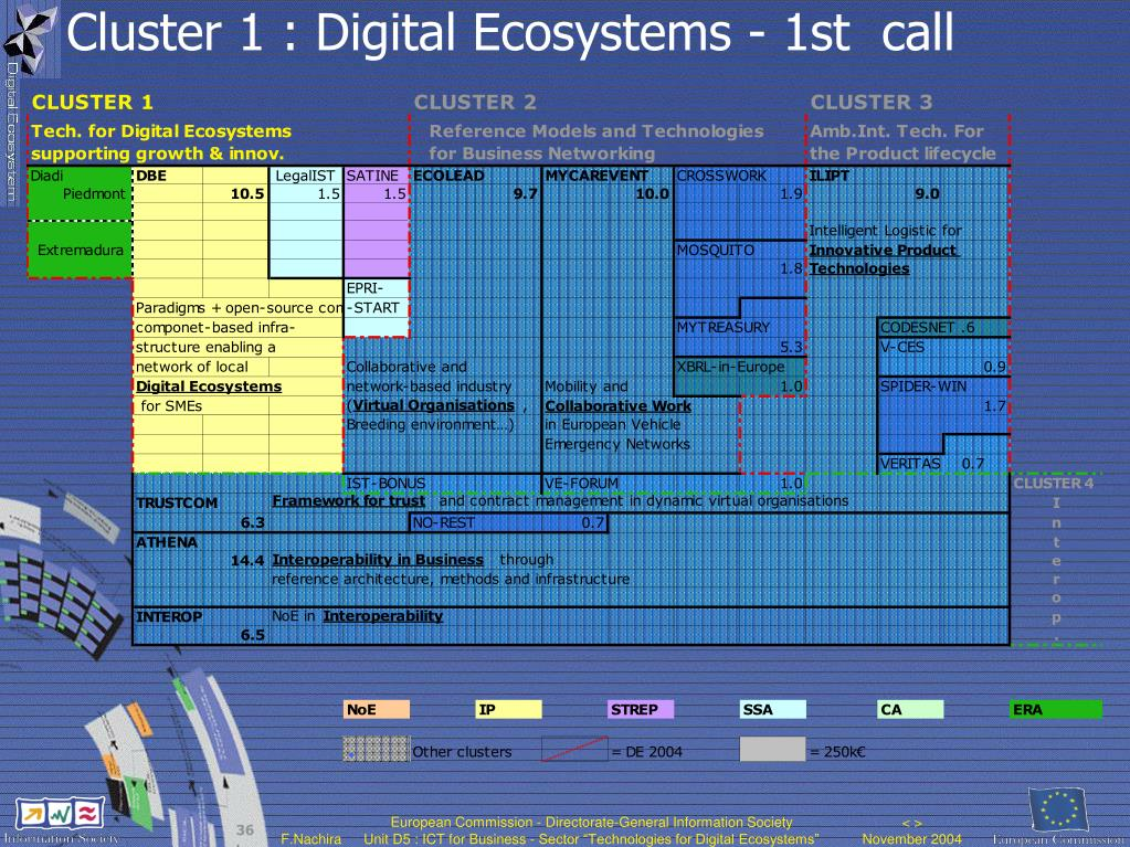 Cluster 1 : Digital Ecosystems - 1st  call