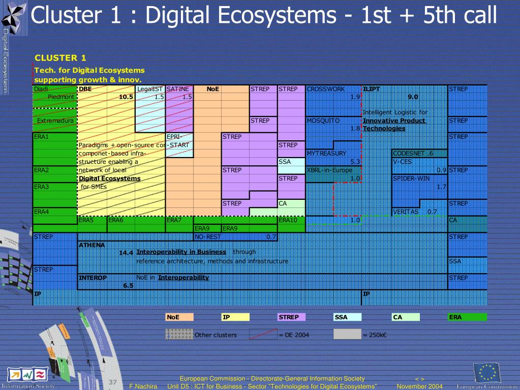Cluster 1 : Digital Ecosystems - 1st + 5th call