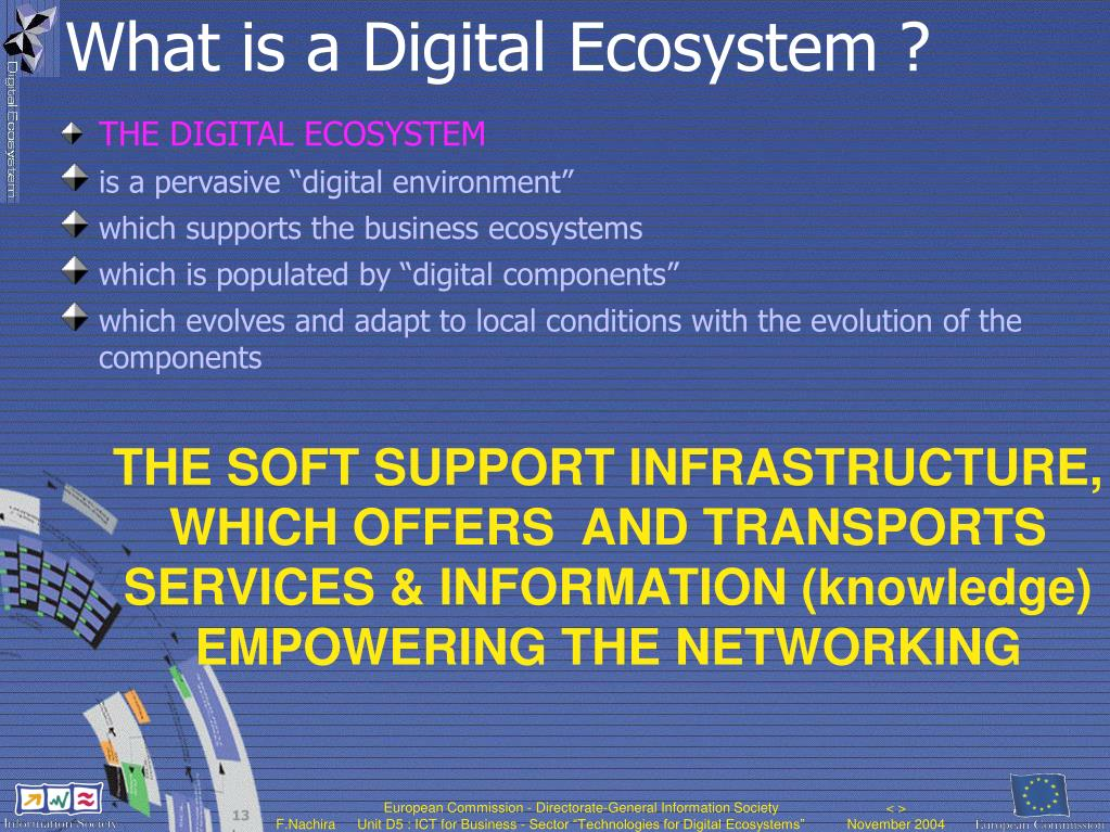 What is a Digital Ecosystem ?