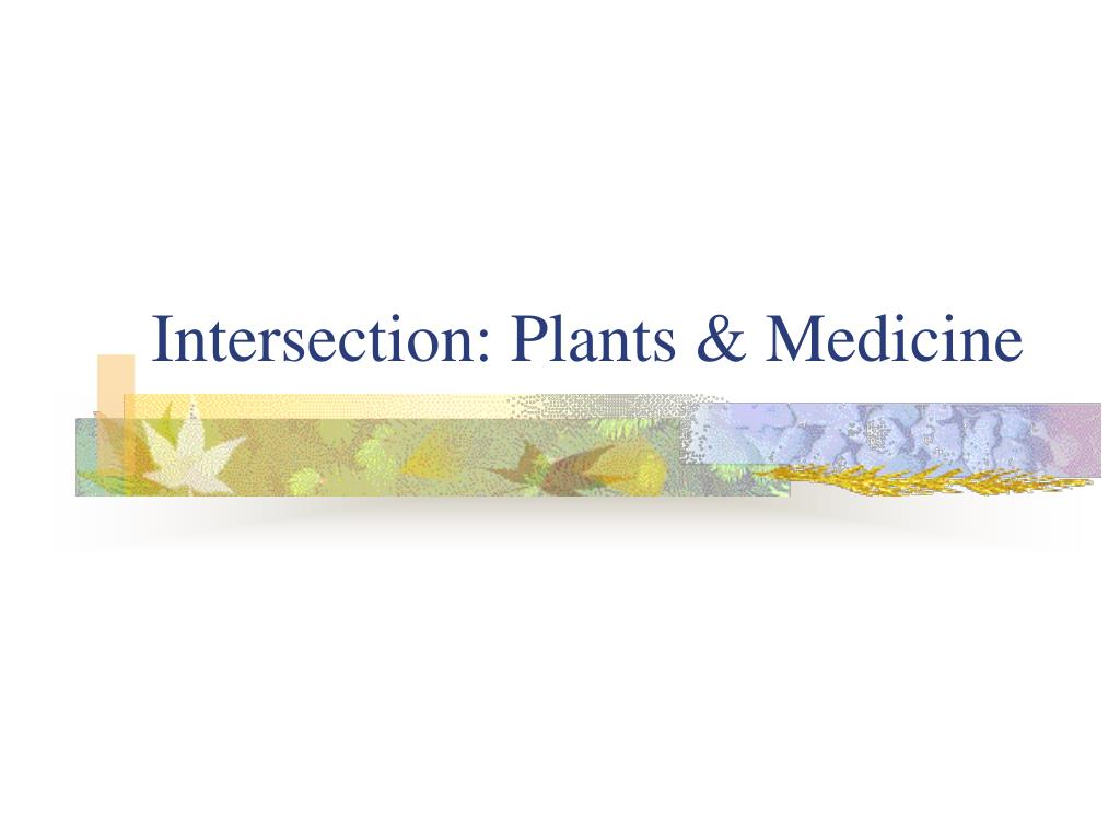 Intersection: Plants & Medicine