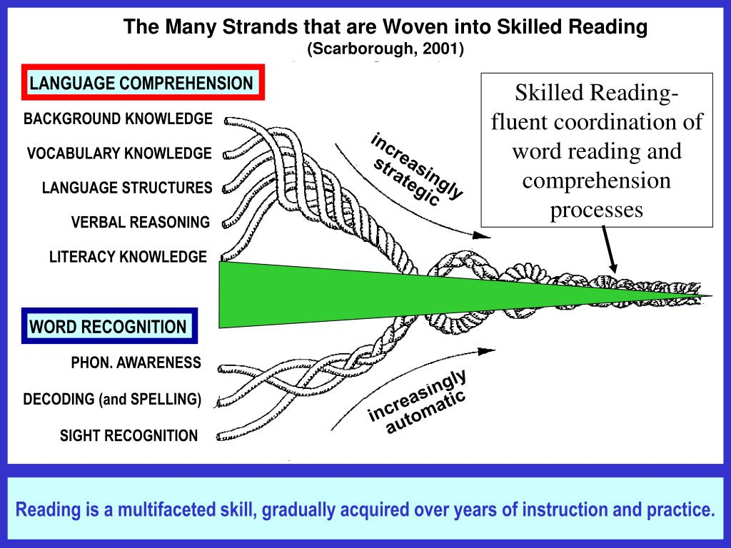 The Many Strands that are Woven into Skilled Reading