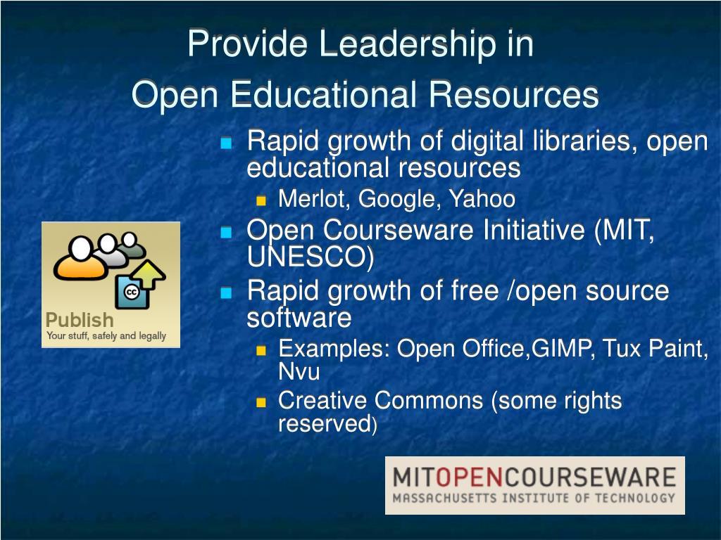 Provide Leadership in