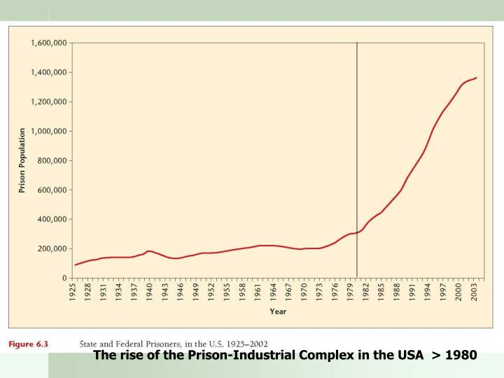 The rise of the Prison-Industrial Complex in the USA  > 1980