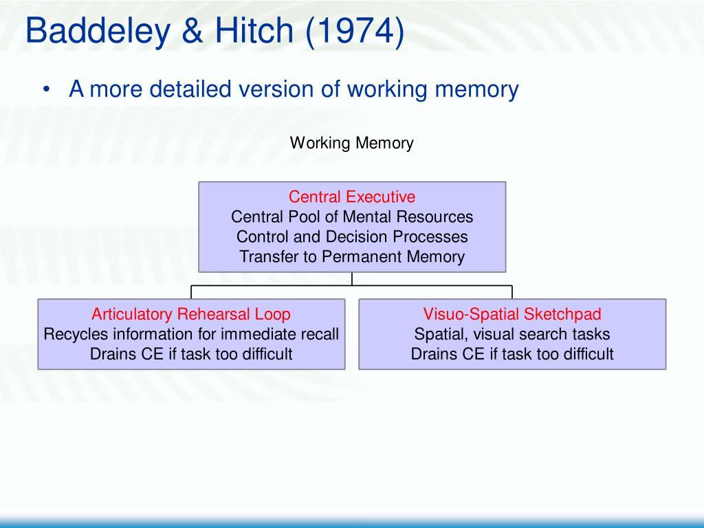 Baddeley & Hitch (1974)