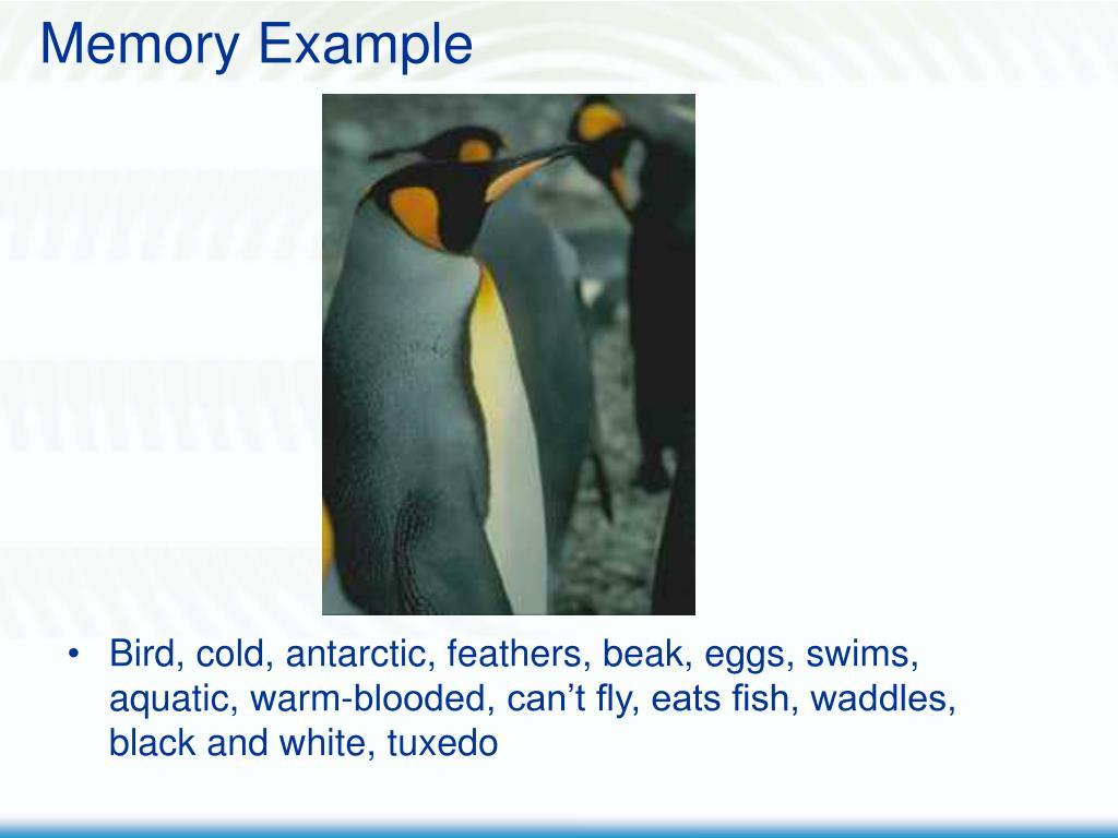 Memory Example