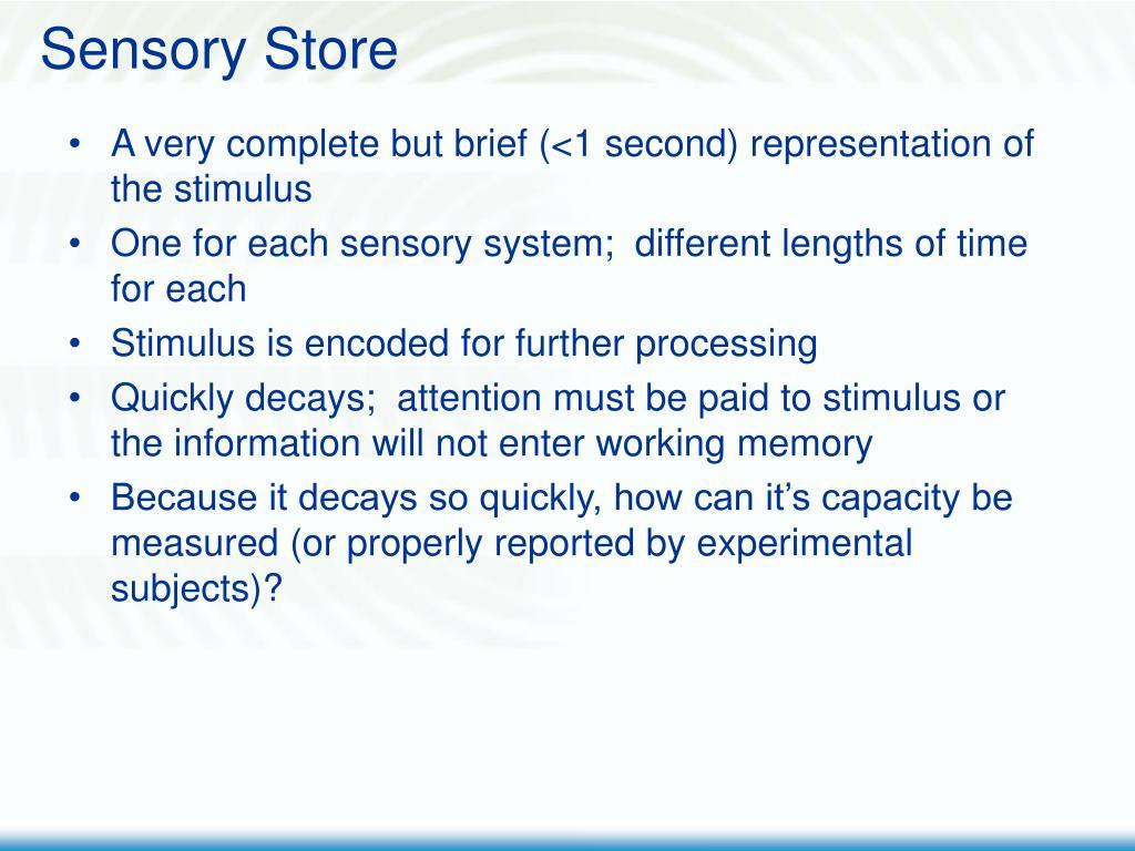 Sensory Store