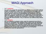 magi approach2