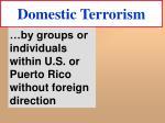 domestic terrorism19