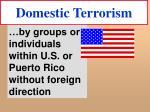 domestic terrorism20