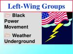 left wing groups27