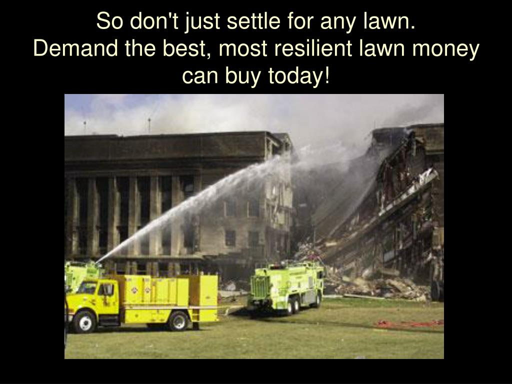 So don't just settle for any lawn.