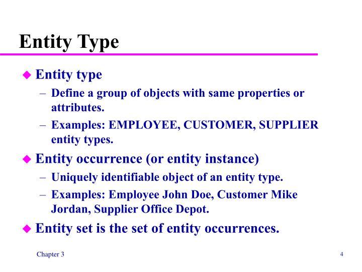Entity Type