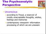 the psychoanalytic perspective3