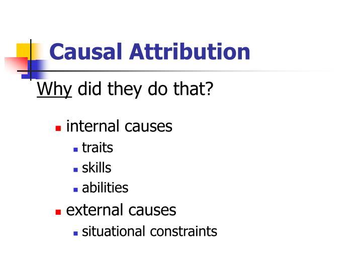 Causal Attribution