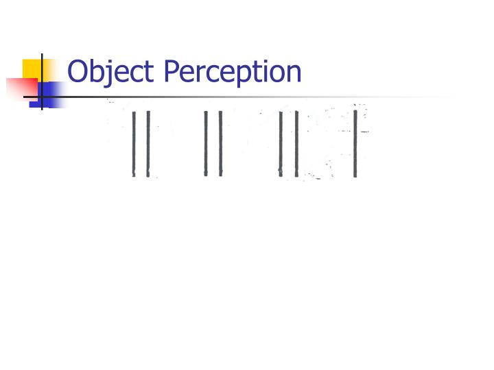 Object Perception