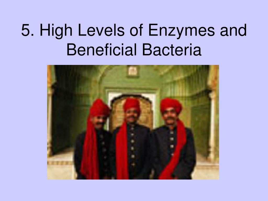 5. High Levels of Enzymes and Beneficial Bacteria