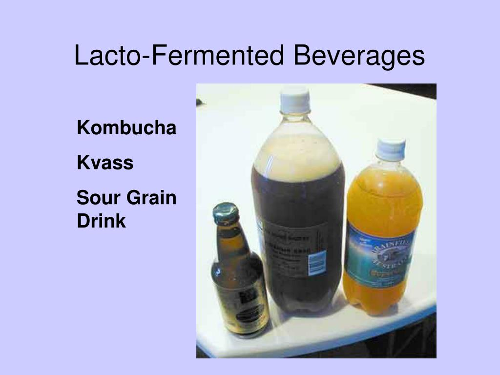 Lacto-Fermented Beverages