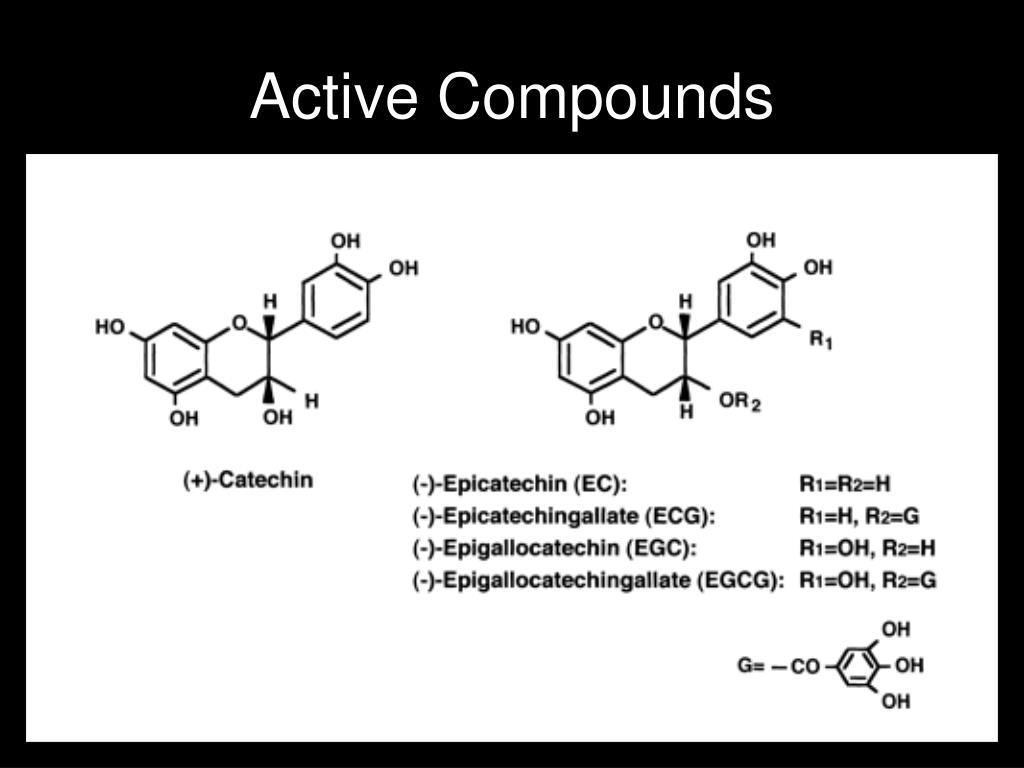 Active Compounds