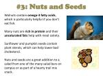 3 nuts and seeds