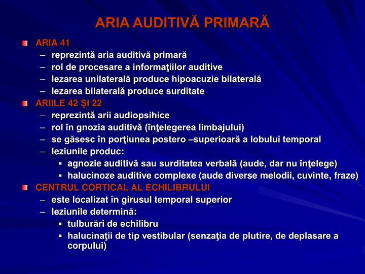 ARIA AUDITIVĂ PRIMARĂ