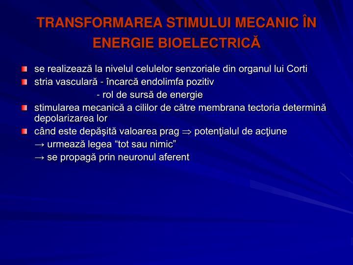 TRANSFORMAREA STIMULUI MECANIC ÎN ENERGIE