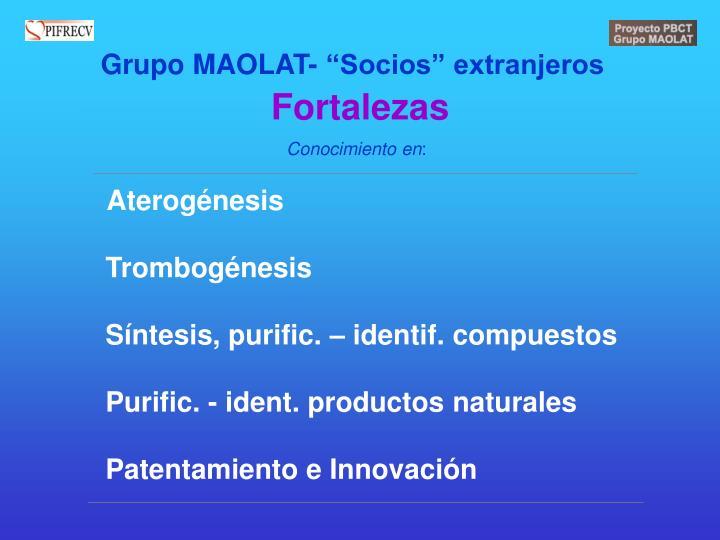 """Grupo MAOLAT- """"Socios"""" extranjeros"""