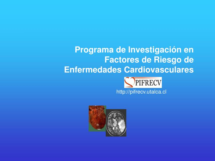 Programa de Investigación en