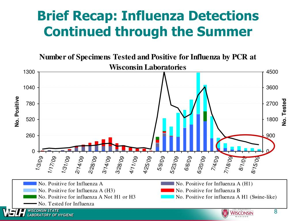 Brief Recap: Influenza Detections Continued through the Summer