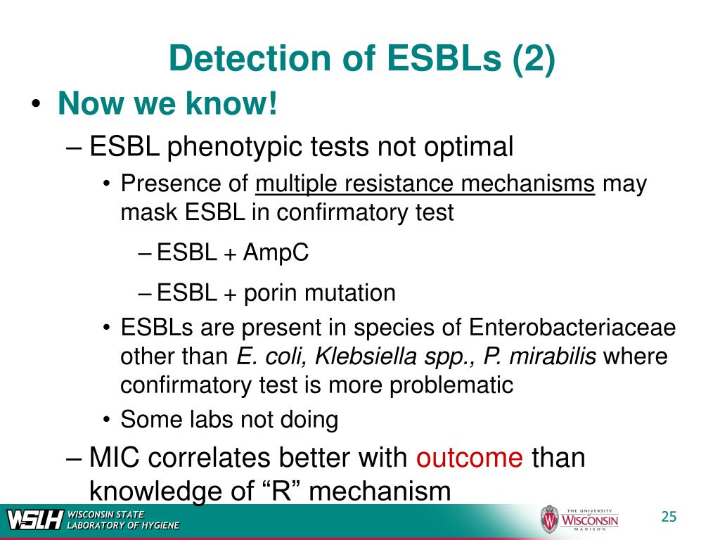 Detection of ESBLs (2)