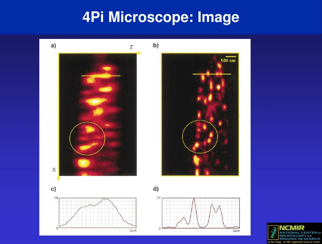 4Pi Microscope: Image