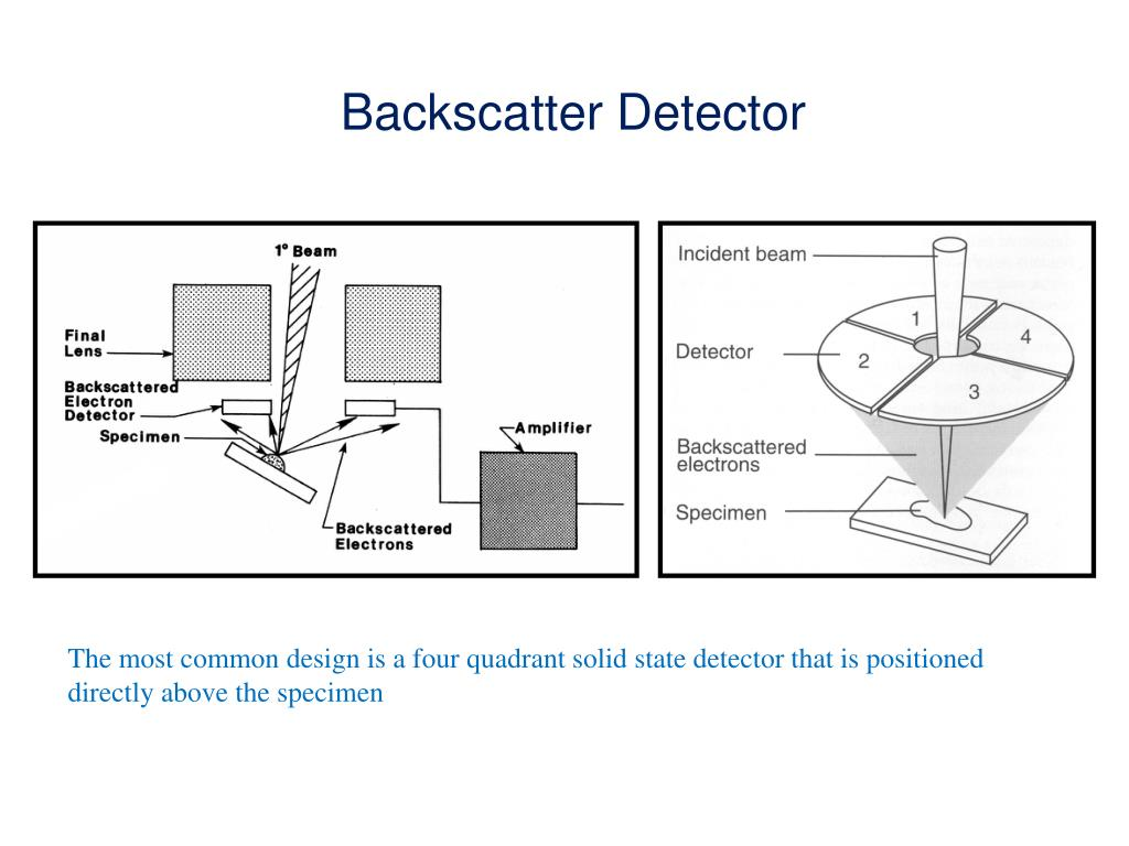 Backscatter Detector