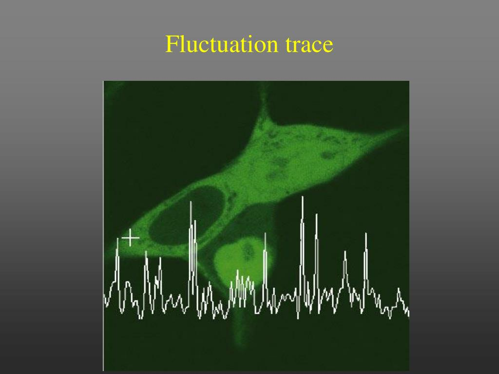 Fluctuation trace