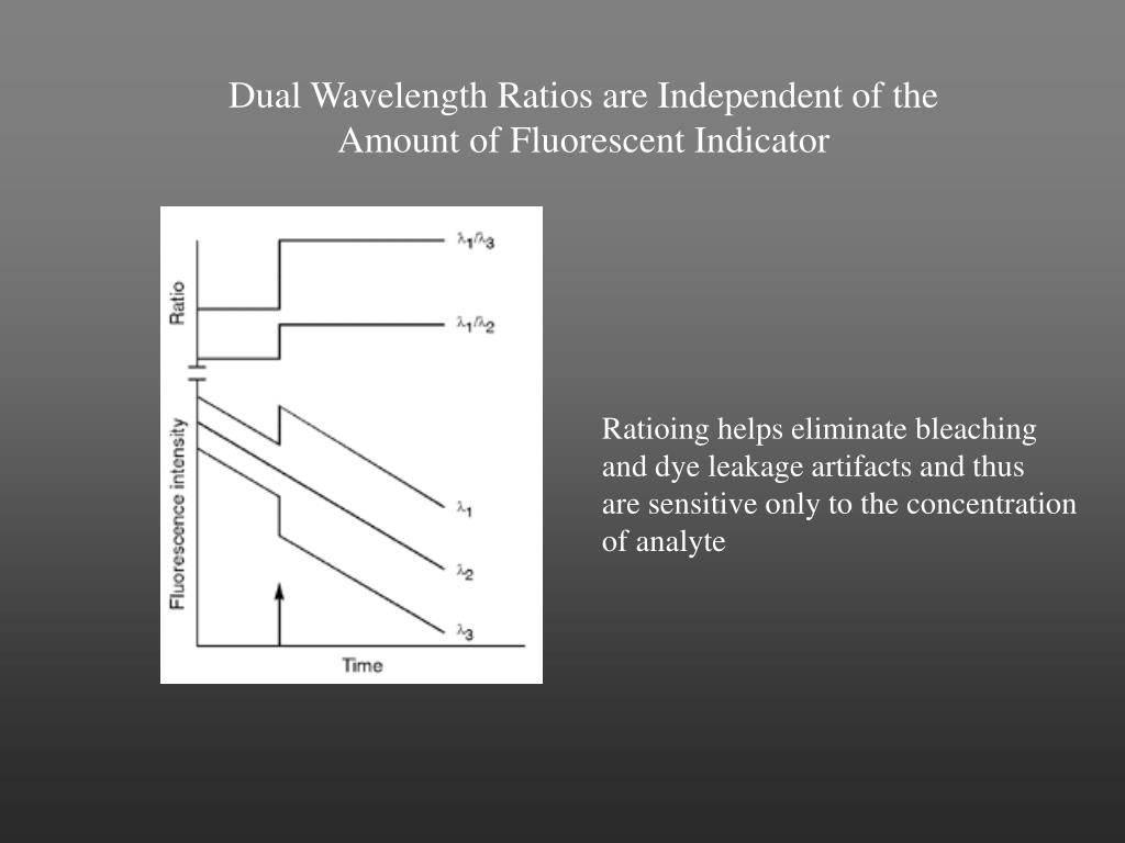 Dual Wavelength Ratios are Independent of the