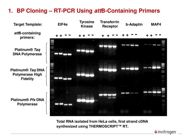 BP Cloning – RT-PCR Using