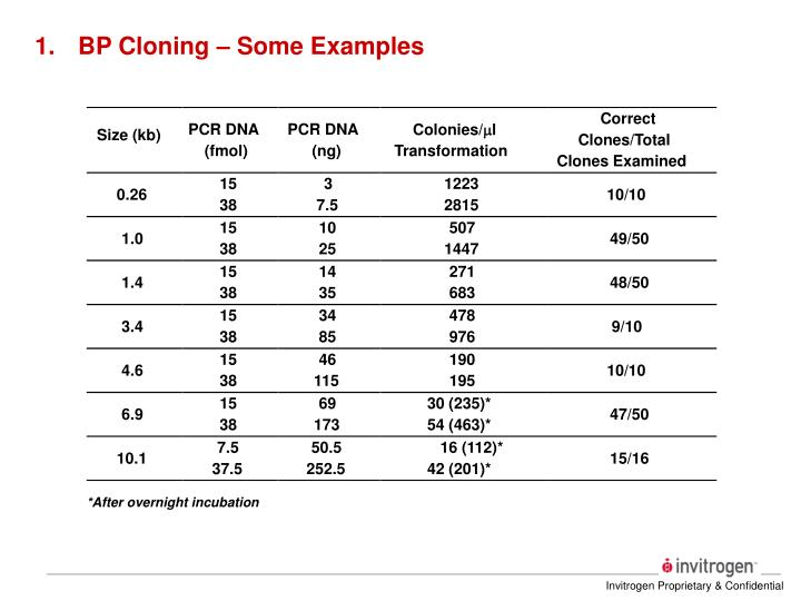 BP Cloning – Some Examples