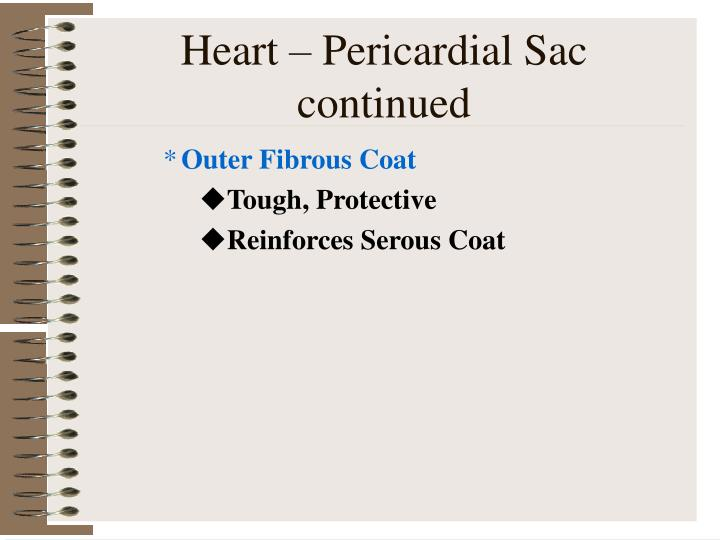 Heart – Pericardial Sac continued