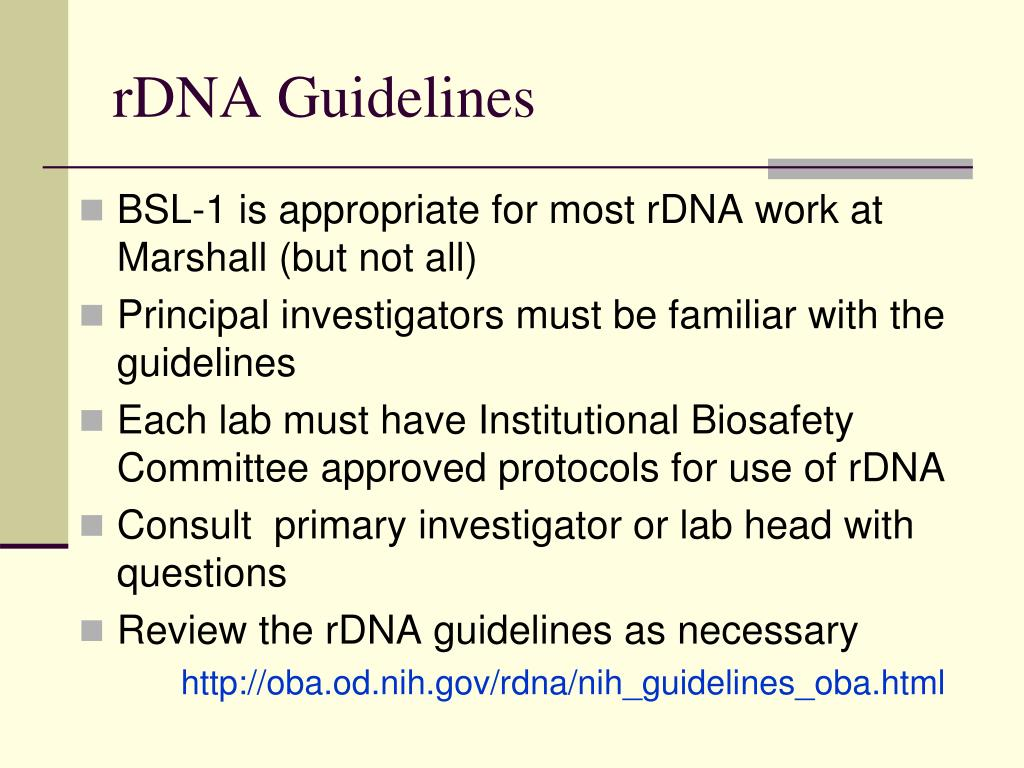 rDNA Guidelines