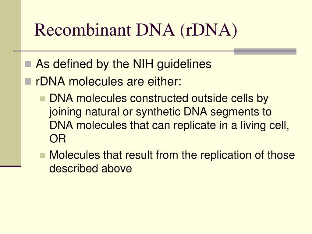 Recombinant DNA (rDNA)
