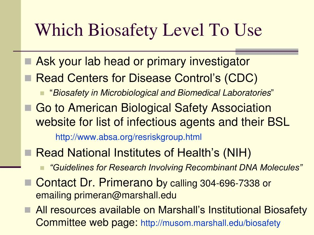 Which Biosafety Level To Use