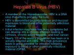 hepatitis b virus hbv