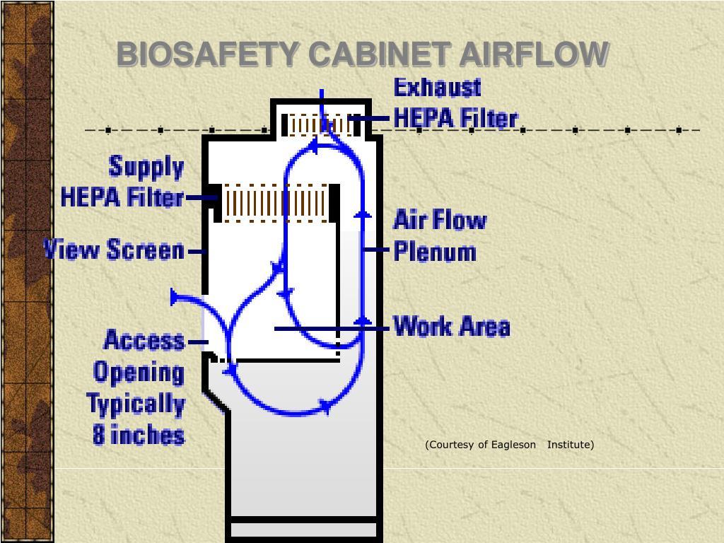 BIOSAFETY CABINET AIRFLOW