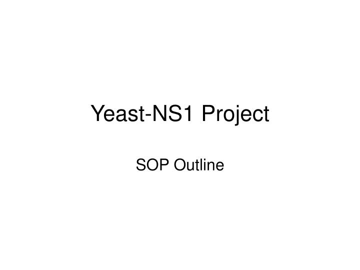 Yeast ns1 project