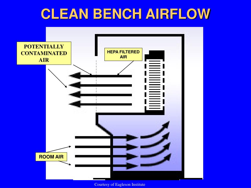 CLEAN BENCH AIRFLOW