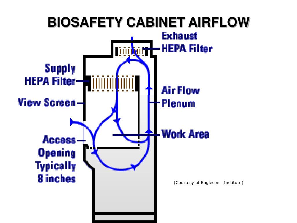 BIOSAFETY CABINET AIRFLOW