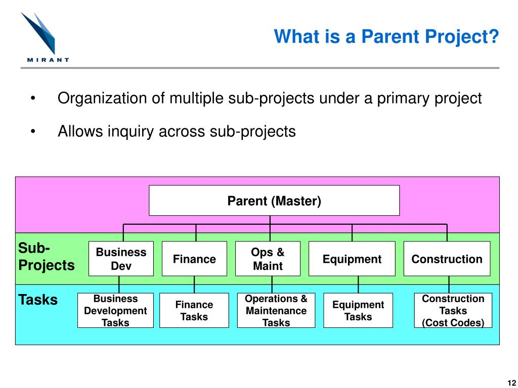 What is a Parent Project?