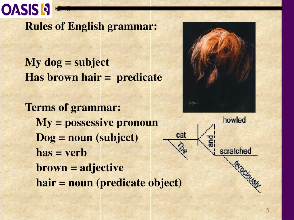 Rules of English grammar: