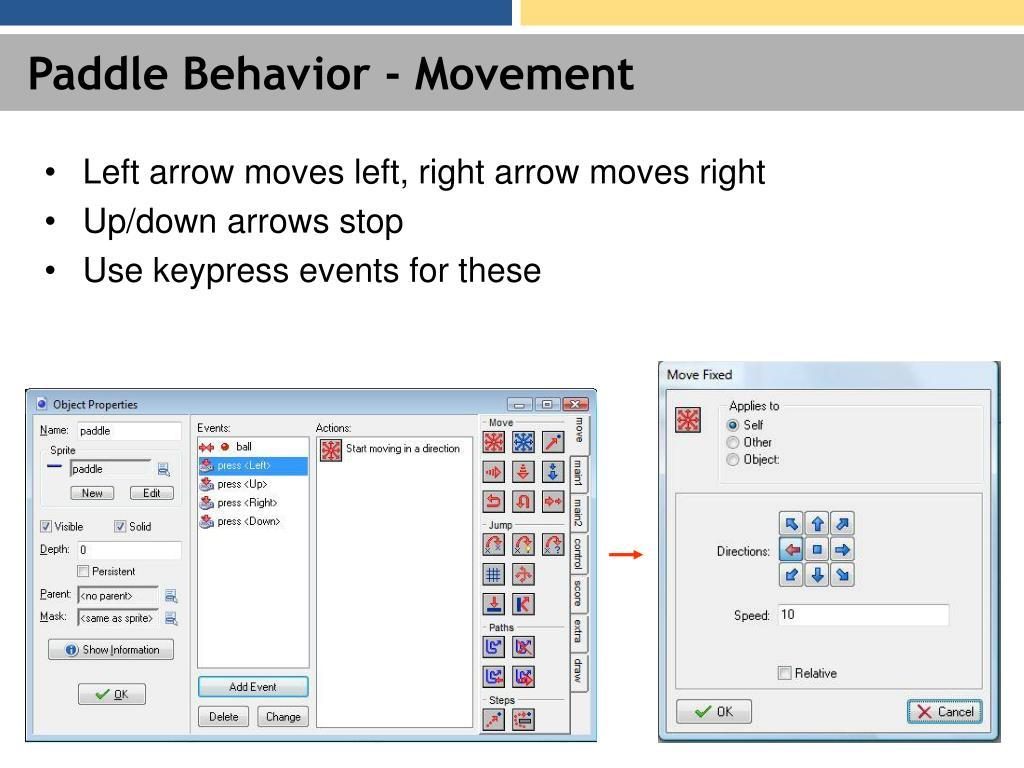 Paddle Behavior - Movement